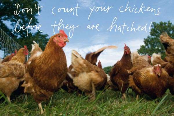 Don't count your chickens before they are hatched